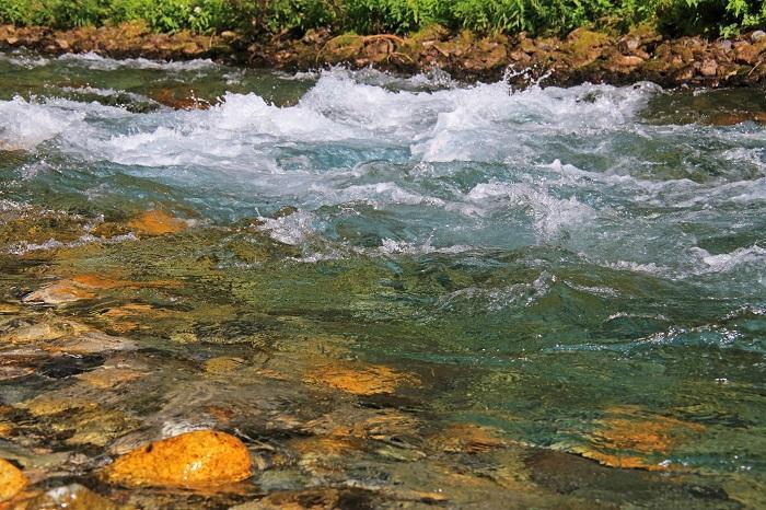 200409-1.jpg